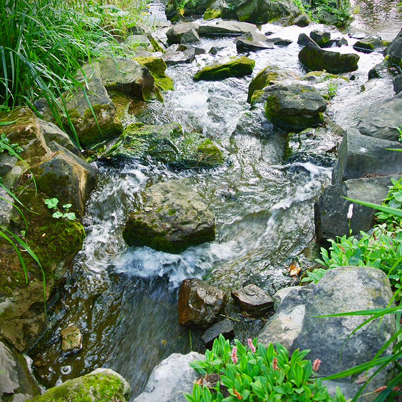 rushing stream in a Viennese park